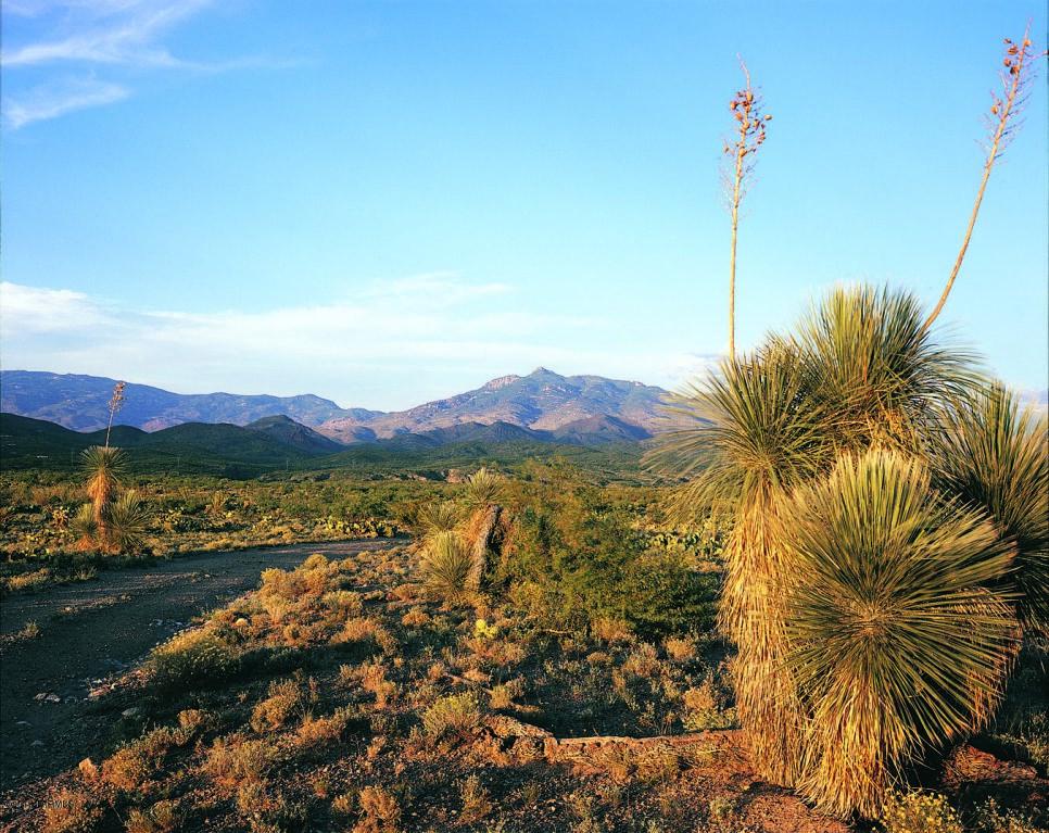13407 S Sundown Ranch Road, Vail, AZ - USA (photo 1)